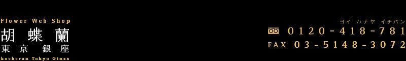 胡蝶蘭 東京銀座
